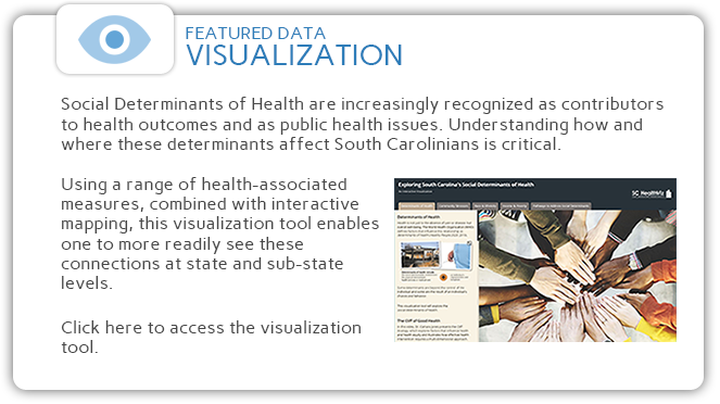 Click here to access the interactive SC Social Determinants of Health mapping tool